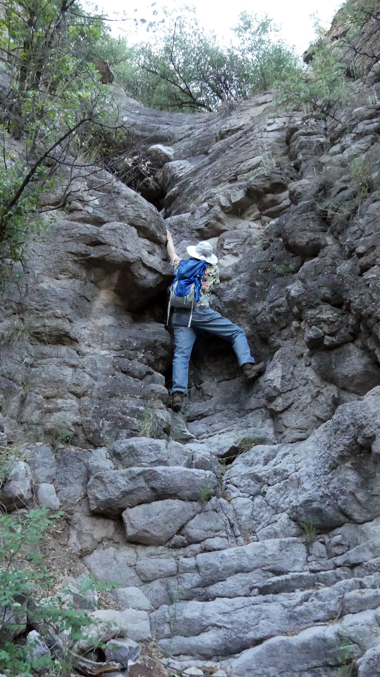 Hiking Cottonwood Canyon