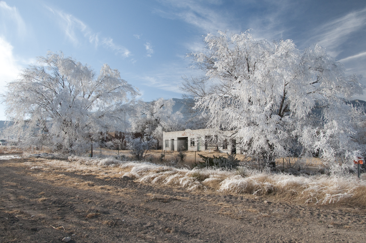 hoarfrost in the Guadalupes