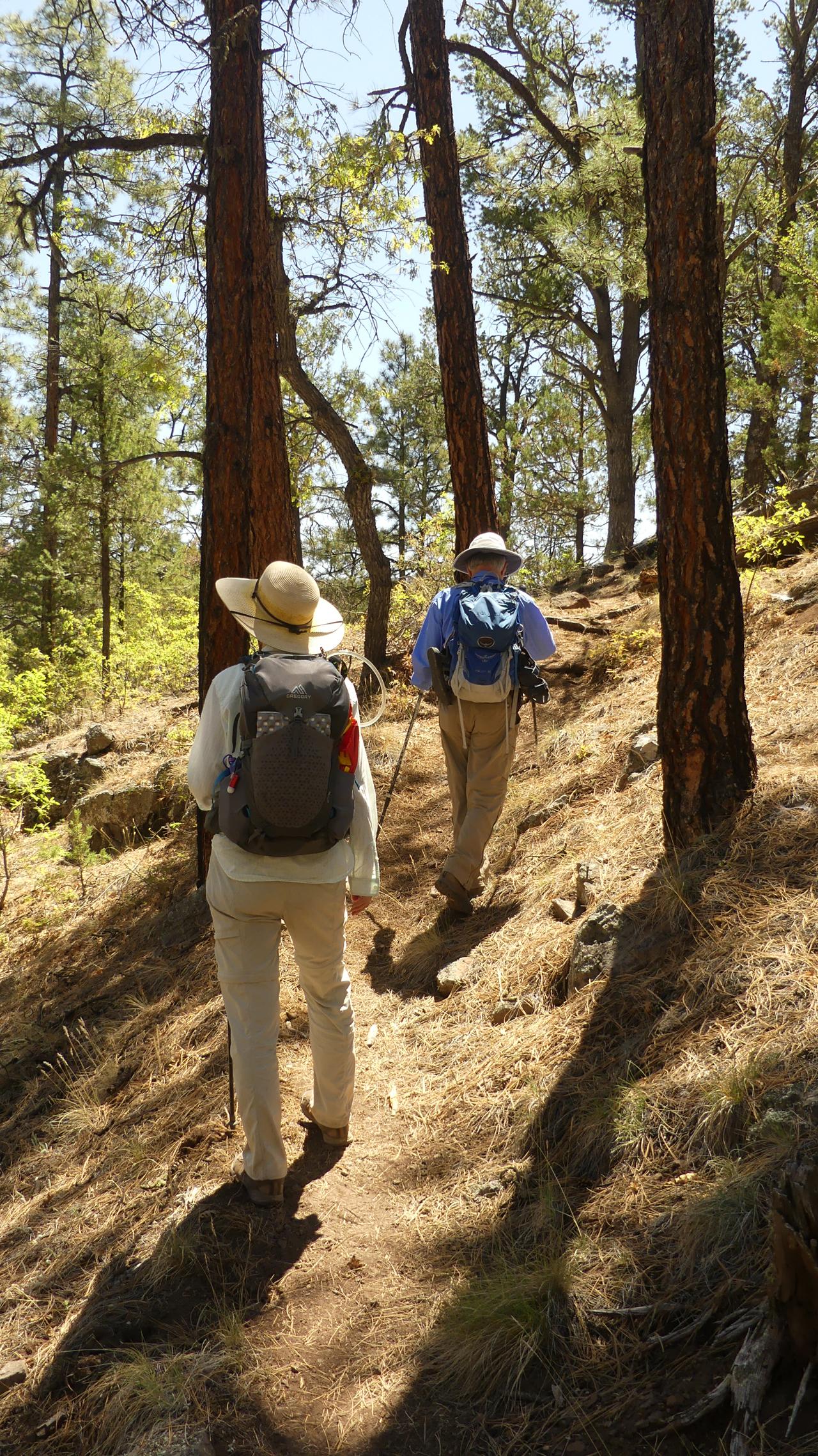 Mimbres River Trail #77