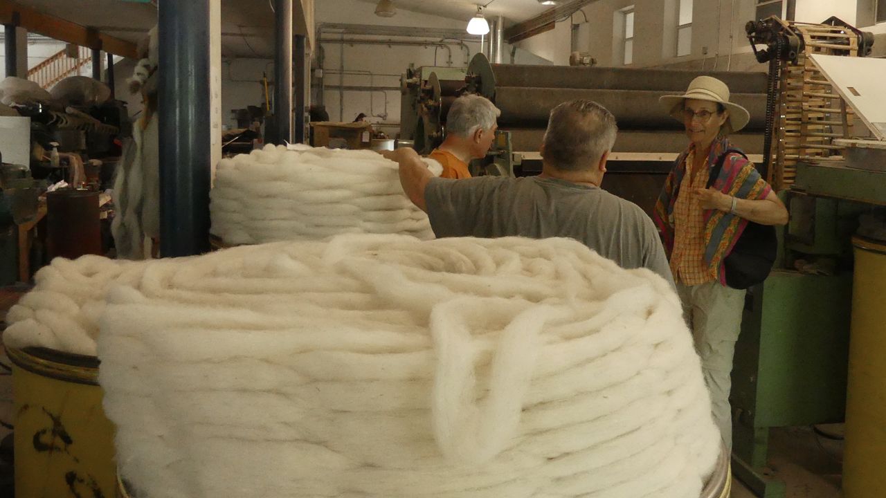 coils of carded wool