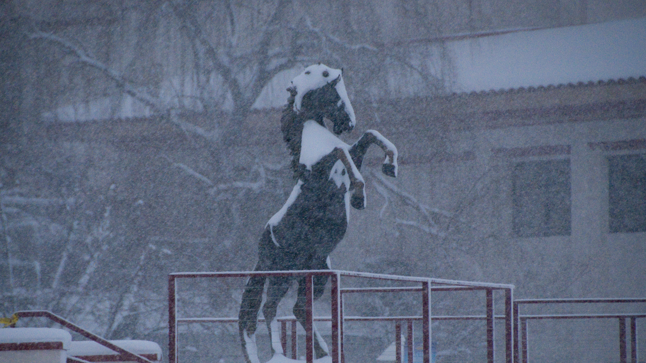 WNMU mustang statue in the snow