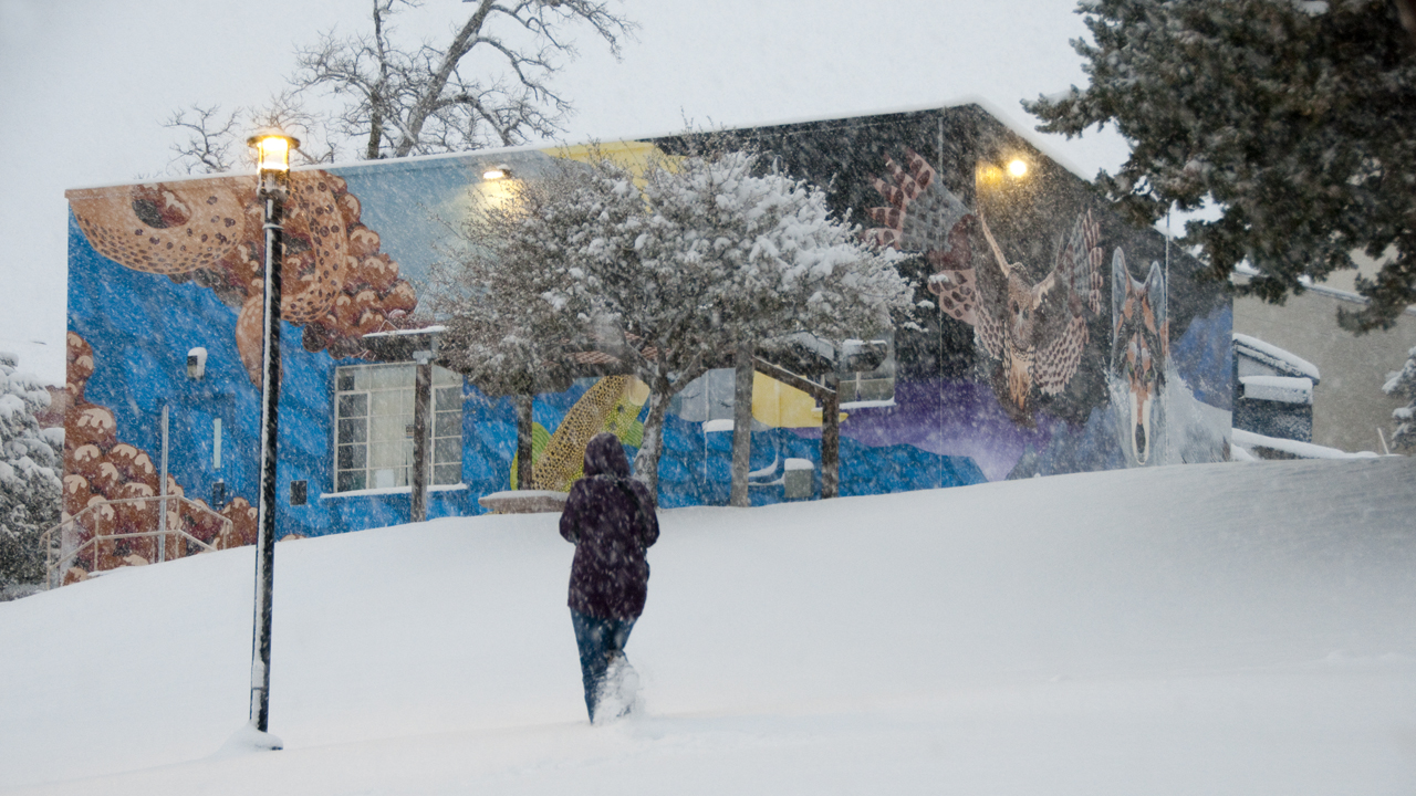 mural on building in snowstorm