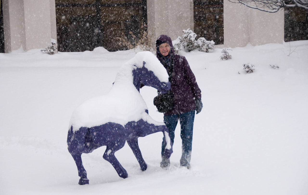 mustang statue in snow
