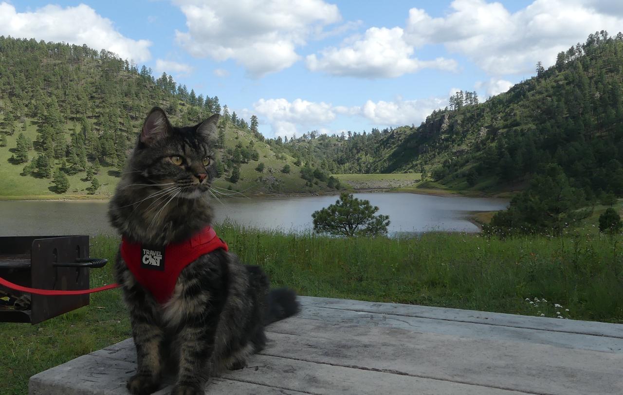 Elio at Snow Lake