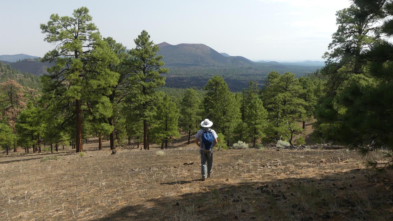 O'Leary Peak Trail
