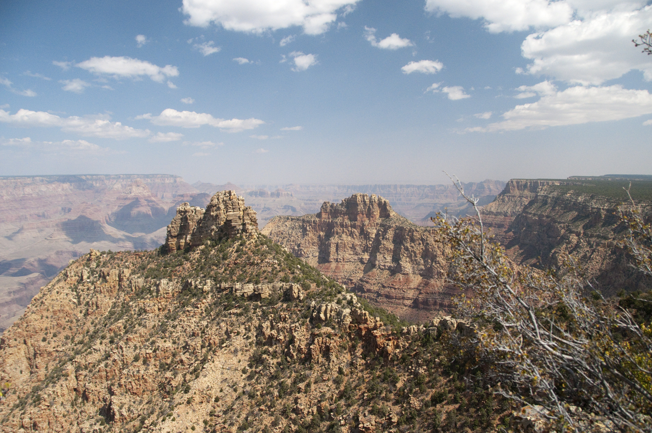 view from South Rim