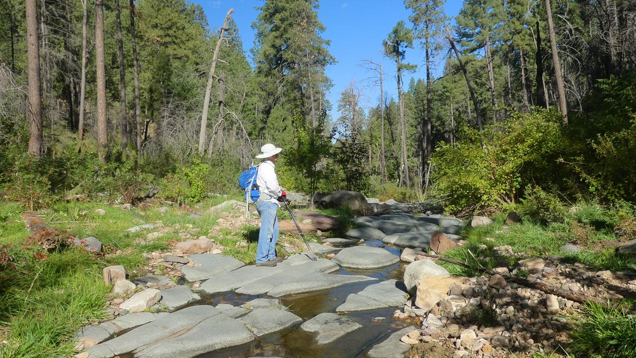 Reynolds Creek